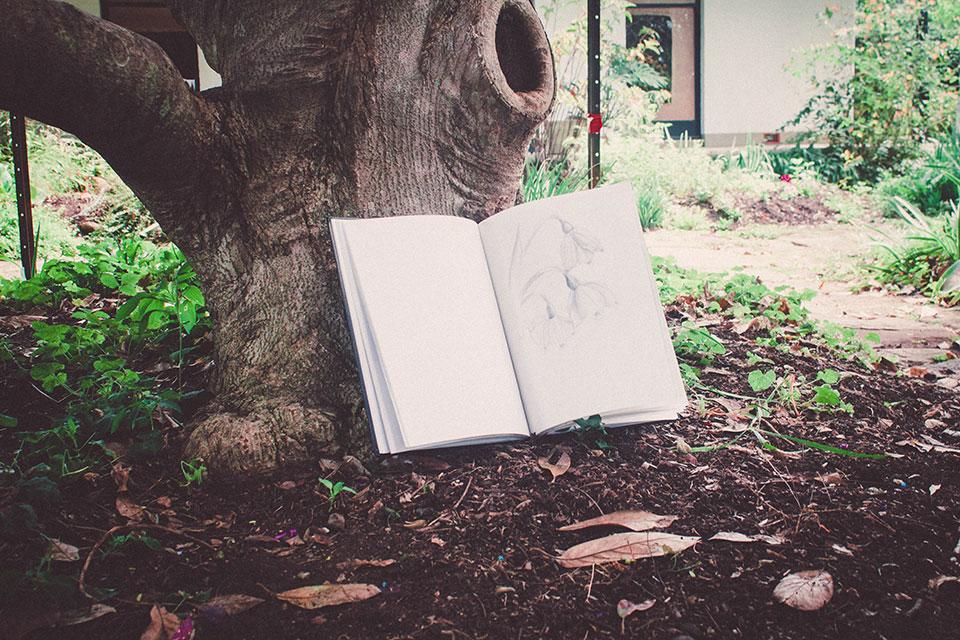 Teen studio: Drawing in the garden